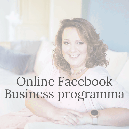 Online Facebook Business Programma